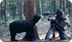 Peter Cayles filming black bear